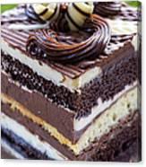 Chocolate Temptation Canvas Print