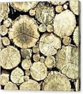 Chopped Wood Canvas Print