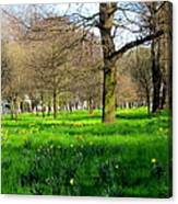 Christchurch Gardens Canvas Print