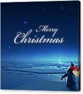 Christmas Card - Penguin Blue Canvas Print