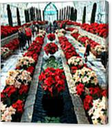 Christmas Card Sunken Garden Canvas Print