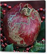 Christmas Fruit Canvas Print