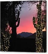 Christmas In Arizona Canvas Print