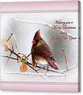 Christmas In Pink - Cardinal Christmas Canvas Print