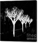 Christmas Lights In Black And White Canvas Print