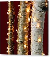 Christmas Lights On Birch Branches Canvas Print
