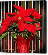 Christmas Red Poinsettia Canvas Print