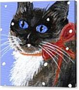 Christmas Siamese Canvas Print