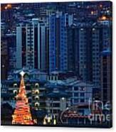 Christmas Tree In La Paz Canvas Print