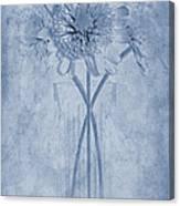 Chrysanthemum Cyanotype Canvas Print