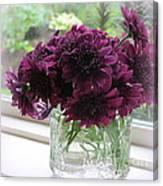 Chrysanthemums In A Glass Jar Canvas Print