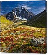 Chugach Autumn Canvas Print