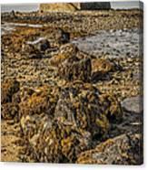 Church By The Rocks Canvas Print