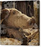 Church Pig Canvas Print