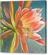Cierge en Fleur Canvas Print