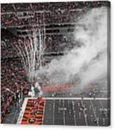 Cincinnati Bengals Playoff Bound Canvas Print