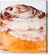 Cinnamon Bun  Canvas Print