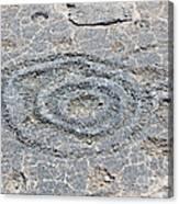Circles And Holes  Canvas Print