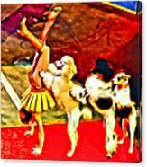Circus Dog Act Canvas Print
