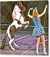 Circus Pony Canvas Print