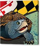 Citizen Terrapin Maryland's Turtle Canvas Print