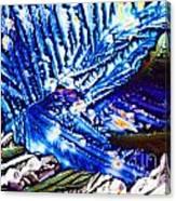 Citric Acid Microcrystals Abstract Color Art Canvas Print