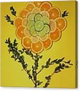 Citrus Fruit Canvas Print