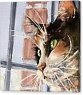 City Cat Canvas Print