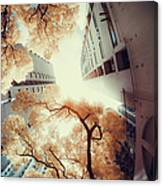 City In Harmony With Nature Canvas Print
