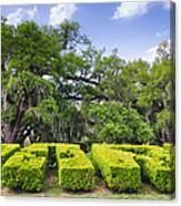 City Park New Orleans Louisiana Canvas Print