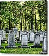 Civitl War Warrior Graves Canvas Print