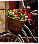 Classic Bicycle With Tulips Canvas Print