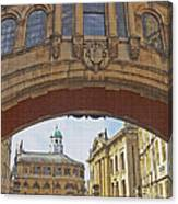 Classic Oxford Textured Canvas Print