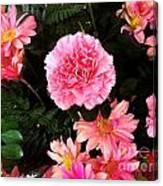Carnations The Spanish Flower Canvas Print