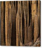 Clay Organ Pipes Formation In Front Canvas Print