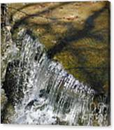 Clear Beautiful Water Series 1 Canvas Print