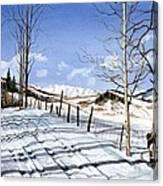 Clear Blue Silence Canvas Print