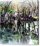 Clear Florida Springs Canvas Print