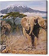 Clearing The Way Canvas Print