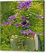 Clematis Vine On Mailbox Photo Art Canvas Print