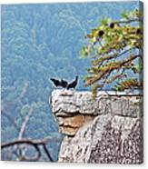 Cliff Hanging Canvas Print