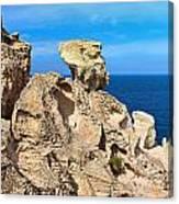 cliff in San Pietro island Canvas Print
