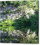 Cliff Reflections Two Canvas Print