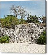 Cliff Stairs 1 Canvas Print