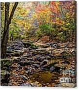 Clifty Creek In Hdr Canvas Print