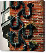 Climbing Drainpipe Canvas Print