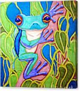 Climbing Tree Frog Canvas Print