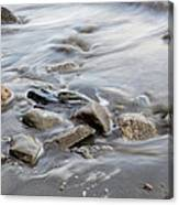 Clinging To The Shore Canvas Print