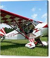 Clipped Wing Cub Canvas Print