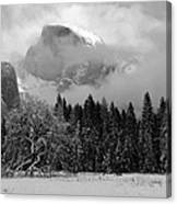 Cloaked In A Snow Storm - Monochrome Canvas Print